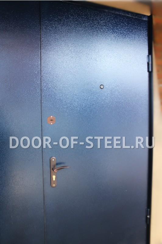 дверь металлическая входная в учреждение