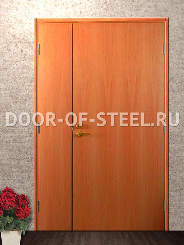 тамбурные металлические двустворчатые двери дешево